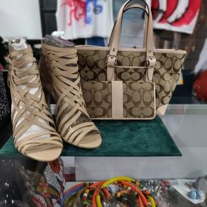 Purse set with shoes